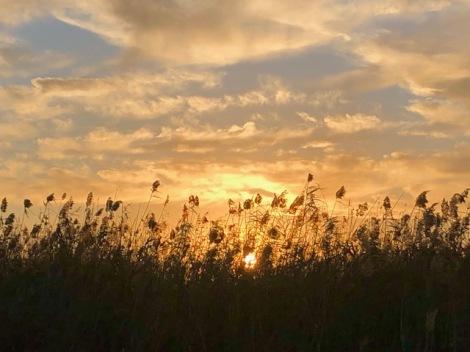 ladysmile sunset